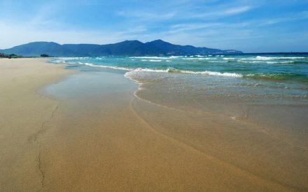 What is Golf Coast Vietnam?